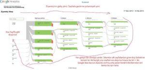 """Ben Google' nin bu işlemine """"Google ters dönüşüm stratejisi"""" adını verdim"""