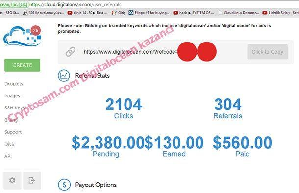 Digitalocean firması'nın affiliate sisteminden yüzlerce hatta binlerce dolar kazanılabiliyor.